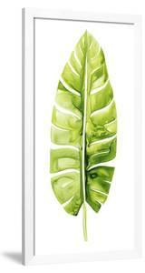 Banana Leaf Study II by Grace Popp