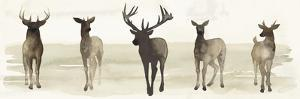 Deer Line II by Grace Popp