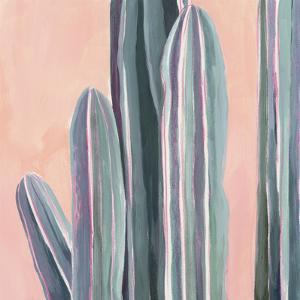 Desert Dawn VI by Grace Popp