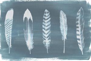 Feathers on Dusty Teal II by Grace Popp