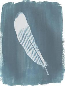 Feathers on Dusty Teal VI by Grace Popp