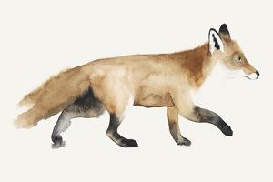Fox Trot II by Grace Popp