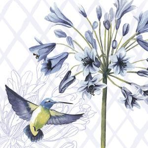 Hummingbird Dance II by Grace Popp