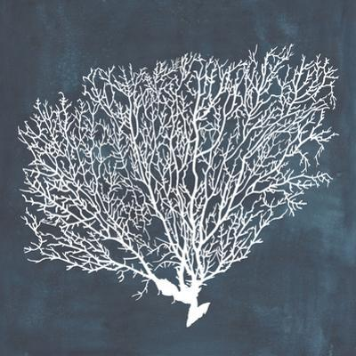 Inverse Sea Fan II