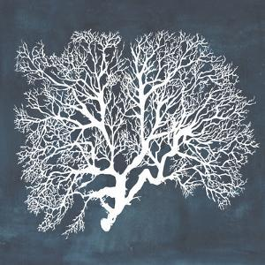 Inverse Sea Fan III by Grace Popp