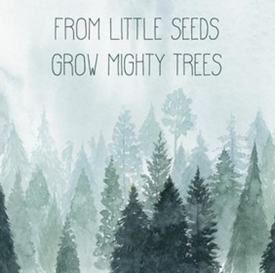 Little Grower I