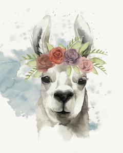 Llama Flora I by Grace Popp