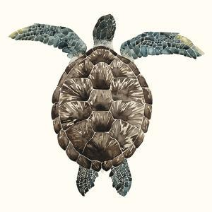 Mosaic Turtle I by Grace Popp