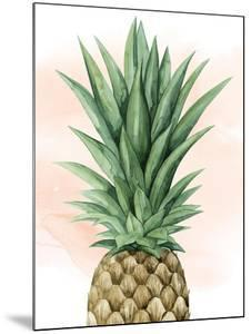 Pineapple on Coral I by Grace Popp