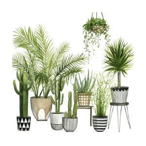 Plant Haven II by Grace Popp
