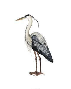 Sea Bird I by Grace Popp
