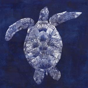 Sea Turtle Shadow II by Grace Popp