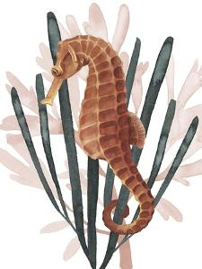 Seahorse Treasures II by Grace Popp