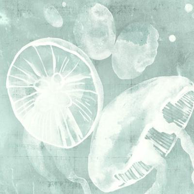 Spa Jellyfish V by Grace Popp