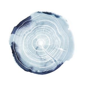 Tree Ring Overlay III by Grace Popp