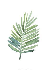 Untethered Palm V by Grace Popp