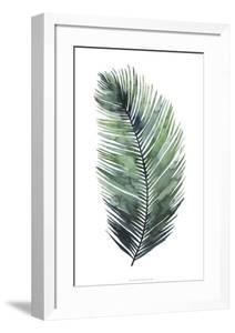 Untethered Palm VII by Grace Popp