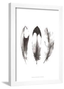 Watercolor Feathers II by Grace Popp