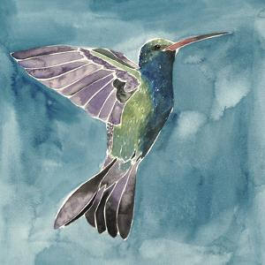 Watercolor Hummingbird I by Grace Popp