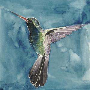 Watercolor Hummingbird II by Grace Popp