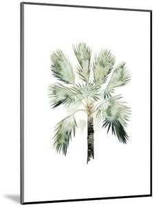Watercolor Palm of the Tropics I by Grace Popp