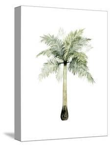 Watercolor Palm of the Tropics II by Grace Popp