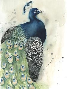 Watercolor Peacock Portrait I by Grace Popp