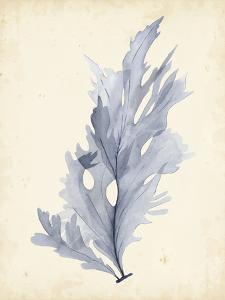 Watercolor Sea Grass VI by Grace Popp