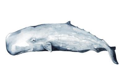 Whale Portrait II