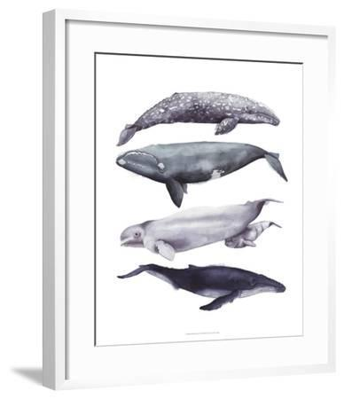 Whale Stack I