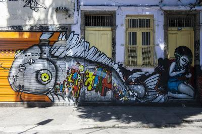 Graffiti Art Work on Houses in Lapa, Rio De Janeiro, Brazil, South America-Michael Runkel-Photographic Print