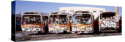 Graffiti Buses at Junkyard, San Francisco, California, USA
