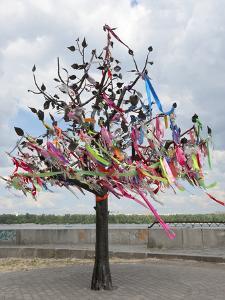 Wish Tree, Kiev, Ukraine, Europe by Graham Lawrence
