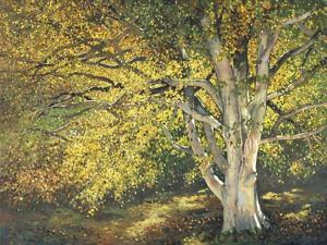 Golden Light I by Graham Reynolds