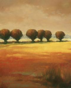 Pollard Willow I by Graham Reynolds