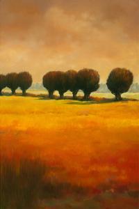Pollard Willow II by Graham Reynolds