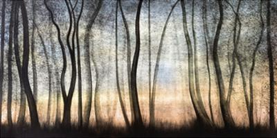 Silver Forest by Graham Reynolds