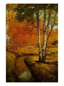 Woodland Stream II by Graham Reynolds