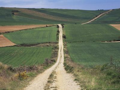Grain Fields Between Najera and Azofra, La Rioja, Spain-Ken Gillham-Photographic Print