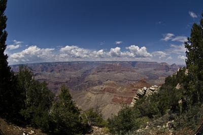 Grand Canyon, Arizona, Viewed Through a Gap in Trees, with Numerous Clouds on the Horizon-Mike Kirk-Photographic Print