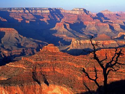 Grand Canyon from South Rim Near Yavapai Point, Grand Canyon National Park, Arizona-David Tomlinson-Photographic Print