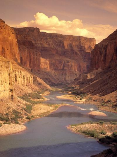 Grand Canyon National Park, CO River, AZ-Amy And Chuck Wiley/wales-Photographic Print