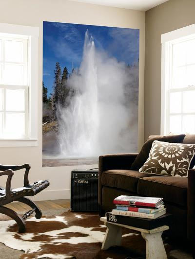 Grand Geyser Erupting, Upper Geyser Basin Geothermal Area, Yellowstone National Park-Stocktrek Images-Wall Mural