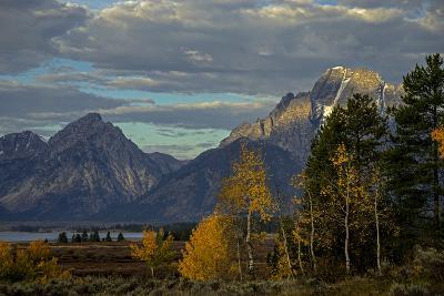 Grand Teton Mountains and Trees in Autumn-Beverly Joubert-Photographic Print
