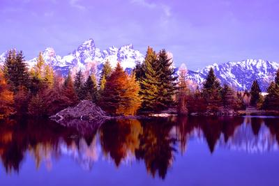 https://imgc.artprintimages.com/img/print/grand-teton-national-park-xiv_u-l-q11ukvz0.jpg?p=0