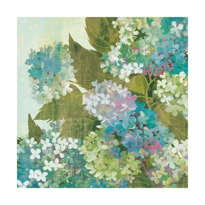 https://imgc.artprintimages.com/img/print/grandiflora-bloom_u-l-q1bn7x10.jpg?p=0