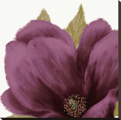 Grandiflora Blush II-Linda Wood-Stretched Canvas Print