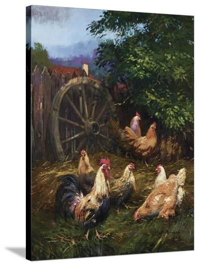 Grandma's Backyard-Nenad Mirkovich-Stretched Canvas Print
