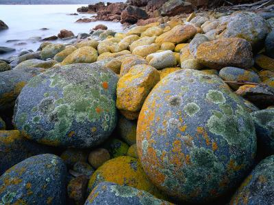 Granite Boulders at Wineglass Bay-Rob Blakers-Photographic Print