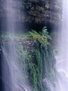 Cascading Waters of Russell Falls, Mt. Field National Park, Tasmania, Australia by Grant Dixon